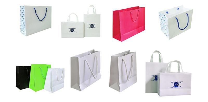 sản phẩm in túi giấy